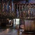 Photos: s8507_きっかわ_千匹の吊り下げ鮭