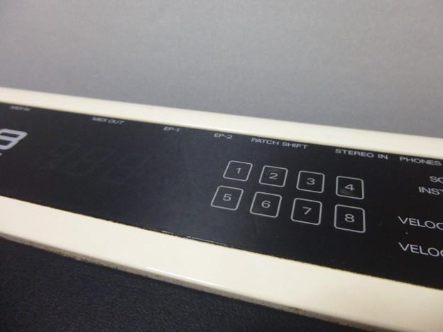 P1250941