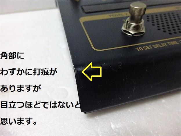 P1310280