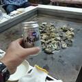 Photos: 今年も牡蠣が口に、乾杯!