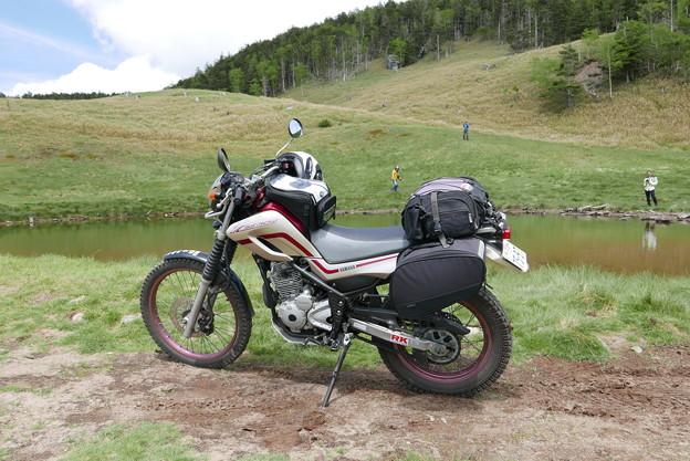 池の辺りでバイクの撮影は定番。