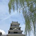 写真: 柳と風と松本城