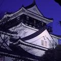 写真: 夜の城
