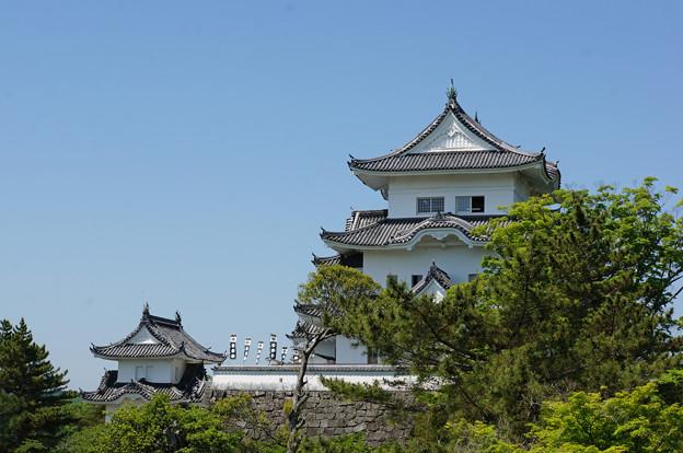 横から見ても城は城