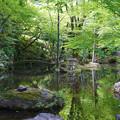 写真: 岐阜公園