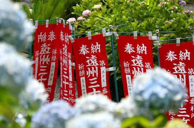 写真: 遠州のあじさい寺
