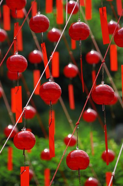 Photos: 赤い風鈴