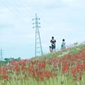 Photos: 秋色散歩