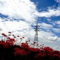 Photos: 赤く染まる季節