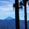 山頂から富士山を眺める