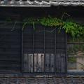 Photos: 蔦の家