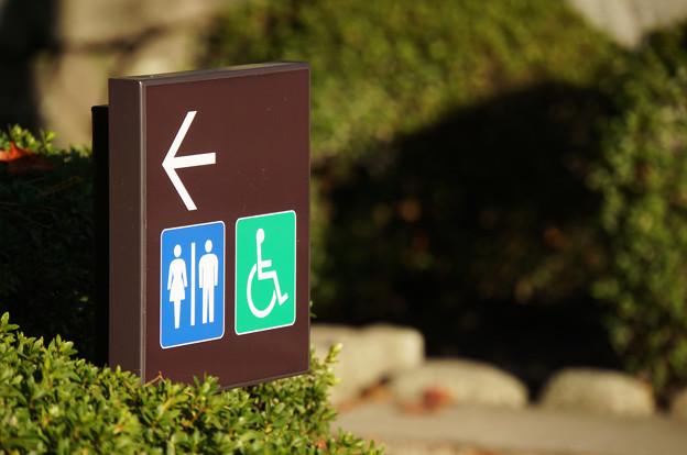 Photos: 西日のトイレ看板