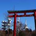 Photos: アンテナと鳥居