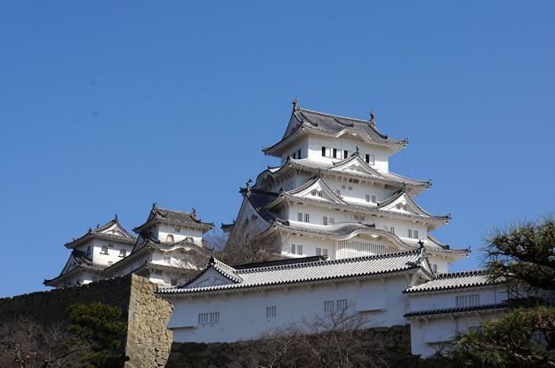 見上げる城
