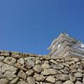 Photos: 城の礎