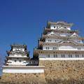 Photos: 日本の城