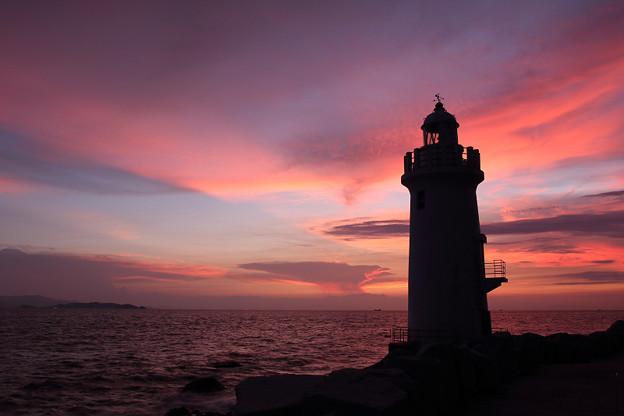 Photos: 夕空に立つ