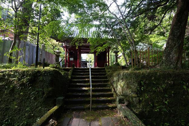古松寺 DSC_8883