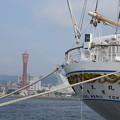 海王丸神戸港停泊