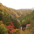 写真: 茅野オシドリ隠しの滝