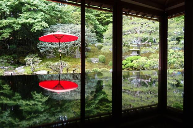 Photos: 旧竹林院1階リフレクション