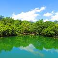 北山第1池