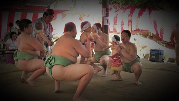 越木岩神社泣き相撲