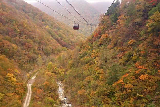 谷川岳ゴンドラ