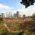 Photos: 令和の大阪の街♪♪