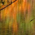 秋薫る仁川