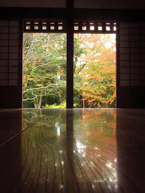 Photos: 閑院宮邸床もみじ