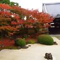 Photos: 四海唱導の庭