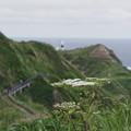 Photos: カムイ岬