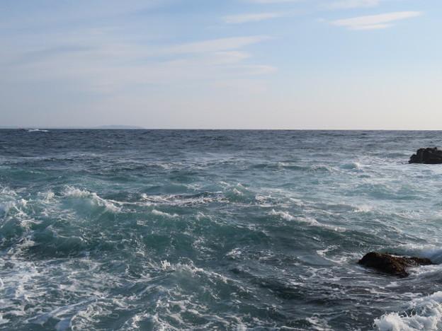 城ヶ島 海その779 IMG_1125