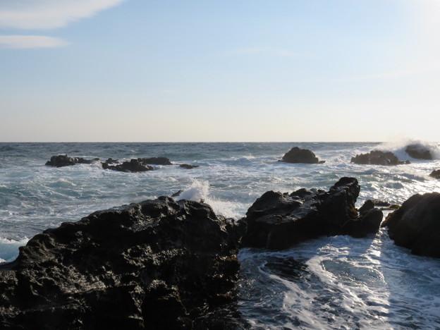 城ヶ島 海その780 IMG_1139