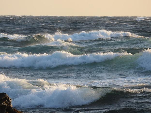 写真: 城ヶ島 海その791 IMG_1303