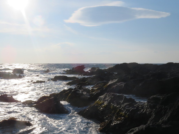 Photos: 城ヶ島 海その799 IMG_1208