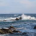 写真: 城ヶ島 海その809 IMG_1171