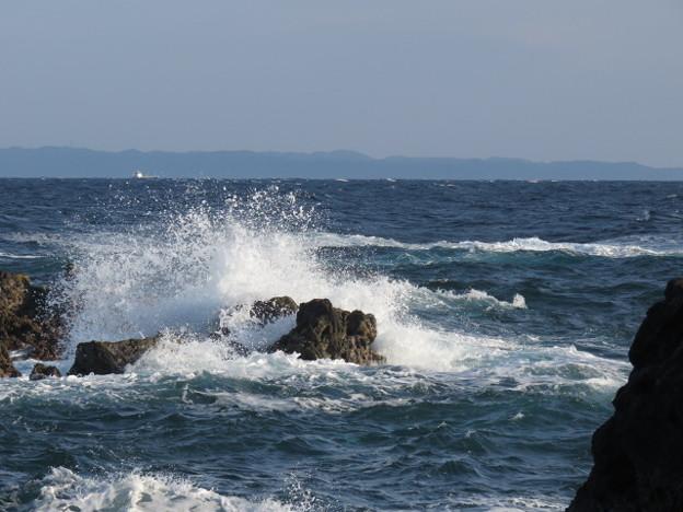 Photos: 城ヶ島 海その816 IMG_1186