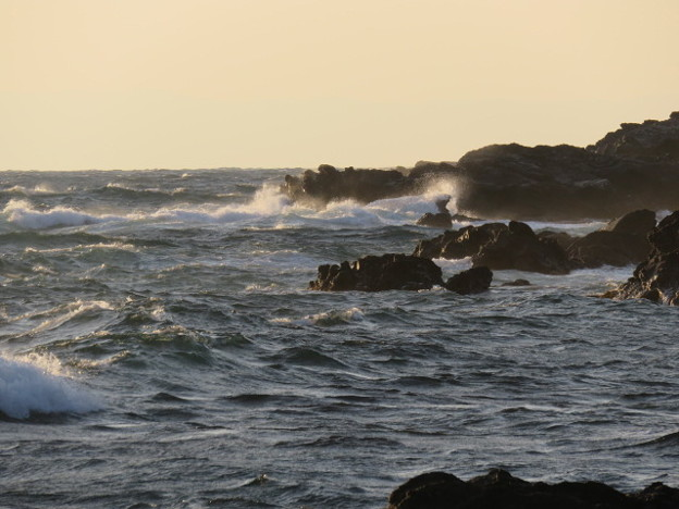城ヶ島 海その818 IMG_1319