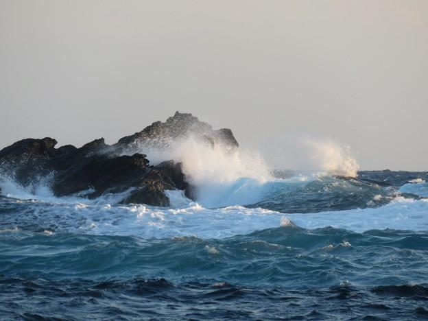 Photos: 城ヶ島 海その820 IMG_1371