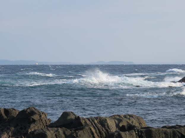 Photos: 城ヶ島 海その822 IMG_1116