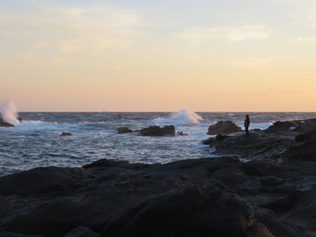 Photos: 城ヶ島 海その826 IMG_1404