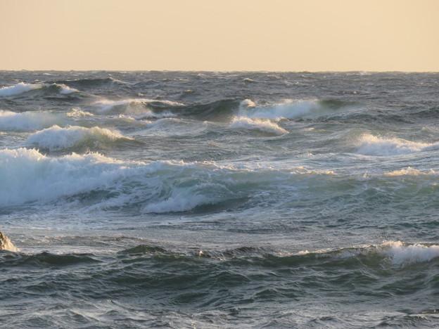 城ヶ島 海その832 IMG_1328