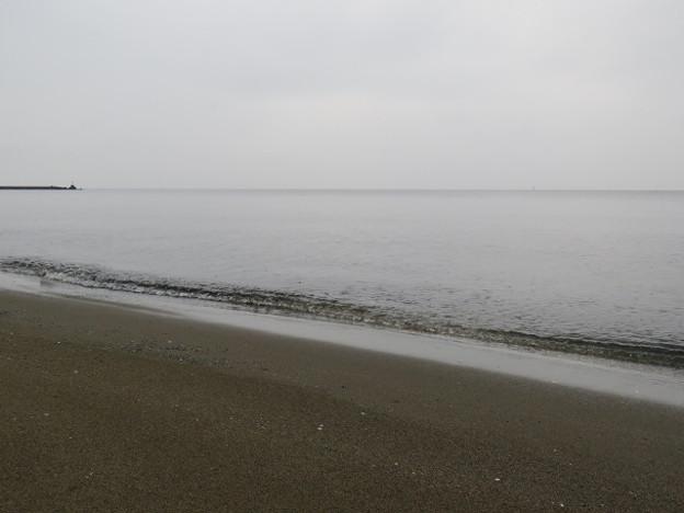 検見川浜 海その838 IMG_2911
