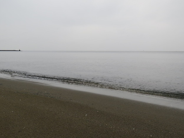 Photos: 検見川浜 海その838 IMG_2911