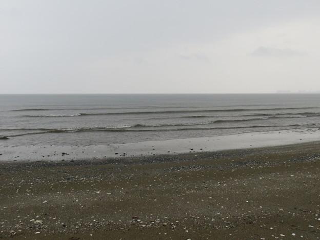 検見川浜 海その839 IMG_2914