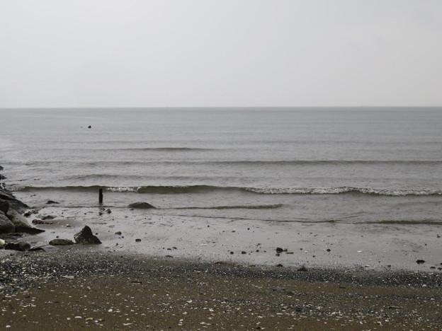 検見川浜 IMG_2919 海その840