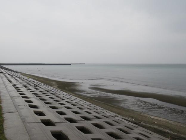 検見川浜 IMG_2925 海その842