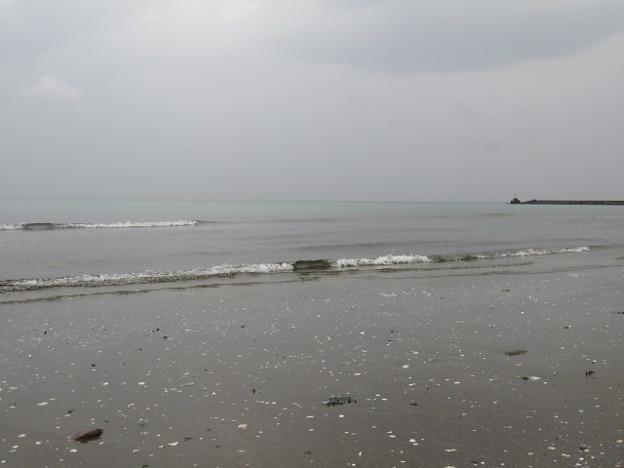 検見川浜 IMG_2944 海その845